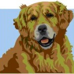 Golden Retreiver Art