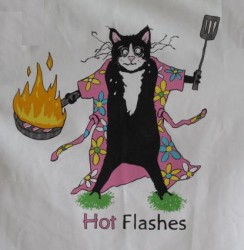 Hot Flashes in the Pan YouTube Videos